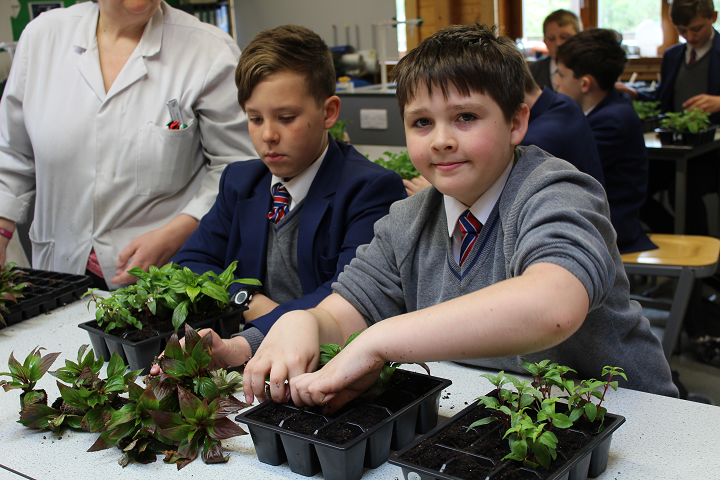 Yr 7 Urmston in Bloom planting 2 crop.png