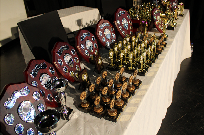 Awards Evening 1 crop.png