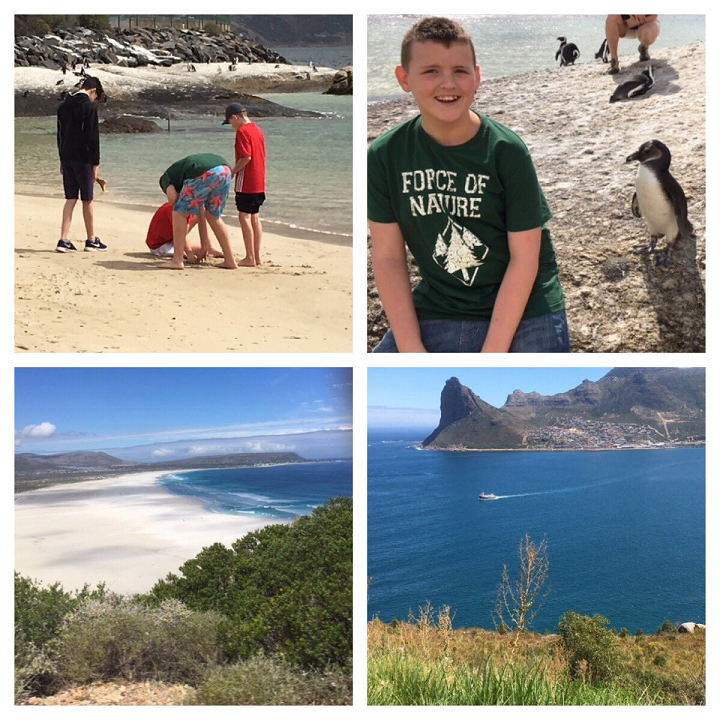 Afritwin photos 12 inc Boulders Beach and Hout Bay crop.png